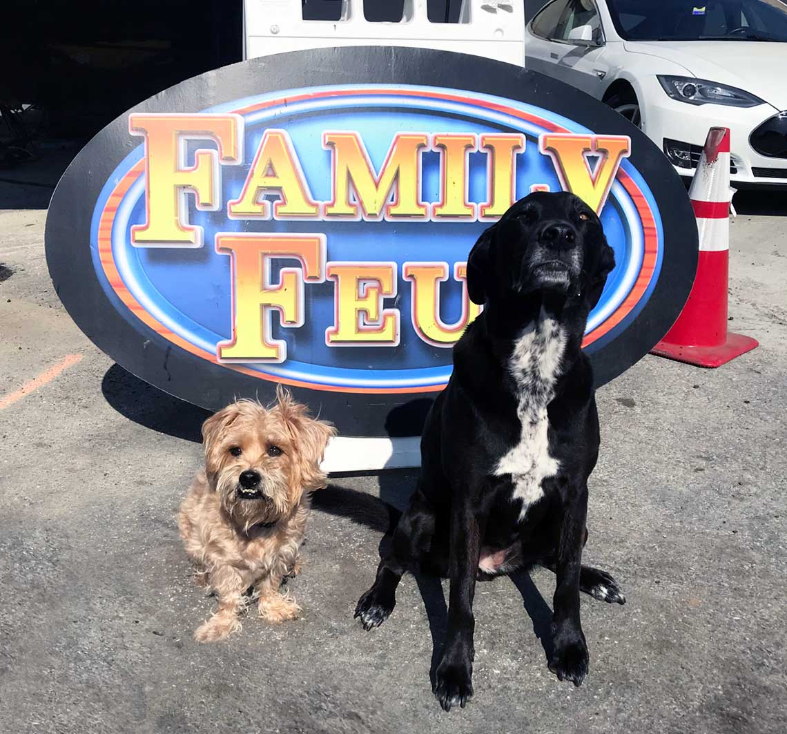 Maddie and Louie in front of the stage
