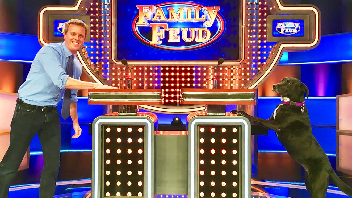 Madeline Hawley: Family Feud's Chief Canine Officer